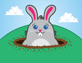 Bunny Hill Royalty Free Stock Images