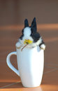 Bunny mug cute dwarf rabbit sitting in a white with a yellow daisy in its mouth Stock Image