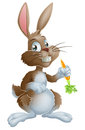 Bunny rabbit and carrot cartoon or easter holding a Royalty Free Stock Photography