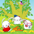 Bunny rabbits in the forest