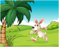 A bunny running at the hilltop illustration of on white background Royalty Free Stock Image