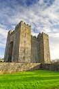 Bunratty castle at Folk Park Royalty Free Stock Photos