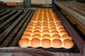 Buns of bread in the factory Royalty Free Stock Images