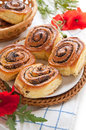 Buns with poppy seeds Royalty Free Stock Image