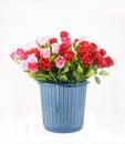 Bunte rosen im korb lokalisiert auf weiß Lizenzfreies Stockfoto