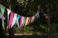 Bunting in the sunshine Royalty Free Stock Images