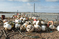 Buoys and floats selection of stored for the winter Royalty Free Stock Photography