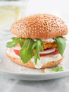 Burger chicken or fish with tomato and rocket selective focus Stock Image