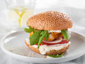 Burger chicken or fish with tomato and rocket selective focus Stock Images