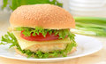 Burger fast food on white plate Royalty Free Stock Images