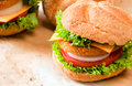 Burger time close up to fishburger and fresh vegetables Royalty Free Stock Photos