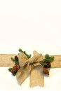 Burlap christmas bow and pine cones frame on white background a fabric ribbon is isolated a surrounded by evergreen tree branches Royalty Free Stock Photos