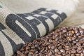 Burlap and coffee beans Stock Images