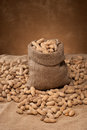 Burlap sack full shelled peanuts loose pods surrounding textile bag Royalty Free Stock Image