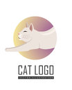 Burmilla Shorthair Cat Flat Vector Illustration
