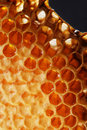 Burn honeycomb Stock Photos