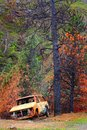 Burned area a car caught in an wild fire sits hollowed out under trees Stock Photos