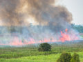Burned fields red flames black smoke incomplete combustion on green Stock Photo