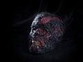 Burned skull Royalty Free Stock Photo