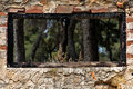 Burned window frame forest view Royalty Free Stock Photography
