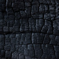 Burned wood texture background forest Royalty Free Stock Photography