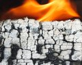 Burned wooden log with ashes texture Royalty Free Stock Photo