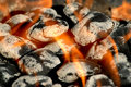 Burning charcoal briquettes Royalty Free Stock Photo