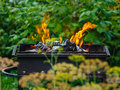 Burning coals in a green garden Royalty Free Stock Photos