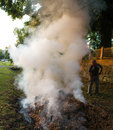 Burning of dry leaves in the park autumn time Stock Photography