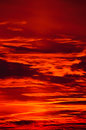 Burning Evening Sky Royalty Free Stock Photo