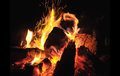 Burning fire closeup of wood on at night Stock Image