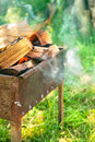 Burning firewood in brazier on green lawn and sunny Stock Photography