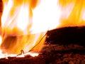 Burning flames Royalty Free Stock Photo