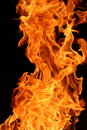 Burning flames Royalty Free Stock Photo