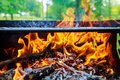 Burning Flames and Glowing Coal in BBQ, Warm orange bonfire with pieces of wood Royalty Free Stock Photo