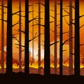 Burning forest fire natural disaster Royalty Free Stock Photo