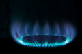 Burning gas in a burner on a black background Royalty Free Stock Image