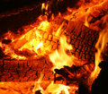 Burning hot embers Stock Photography