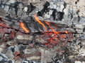 Burning log and embers Royalty Free Stock Photography