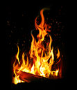 Burning log and fire Stock Photography