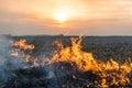 Burning of straw Royalty Free Stock Photo