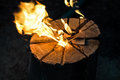 Burning tree stump. Royalty Free Stock Photo