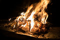 Burning wood in campfire Royalty Free Stock Photo