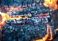 Burning wood in a firebox. Firewood turns to coal Royalty Free Stock Photo