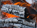 Burninging firewood Stock Image