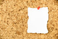 Burnt edges white paper pinned on a bulletin board. Royalty Free Stock Photo