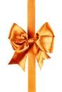 Burnt orange bow photo Royalty Free Stock Photo