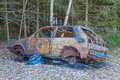 Burnt out car in the woods Stock Photography