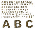 Burnt parchment alphabet Royalty Free Stock Photo