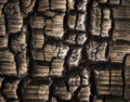 Burnt wood macro closeup of Stock Images